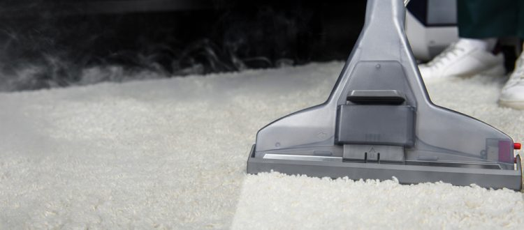 Keeping Your Carpets Mold Free