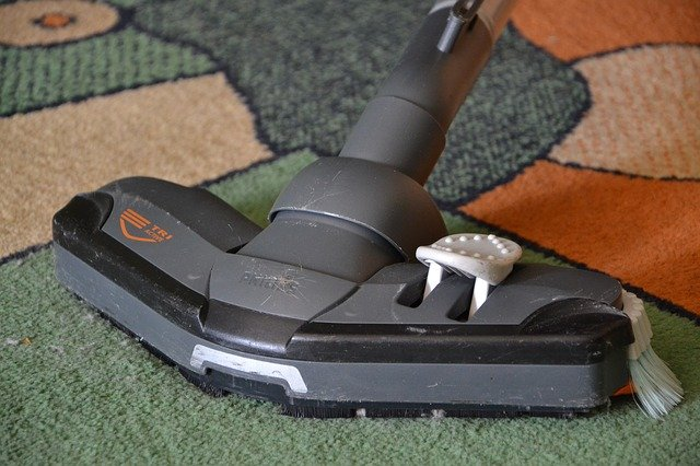 What You Need To Look For In A Carpet Cleaner